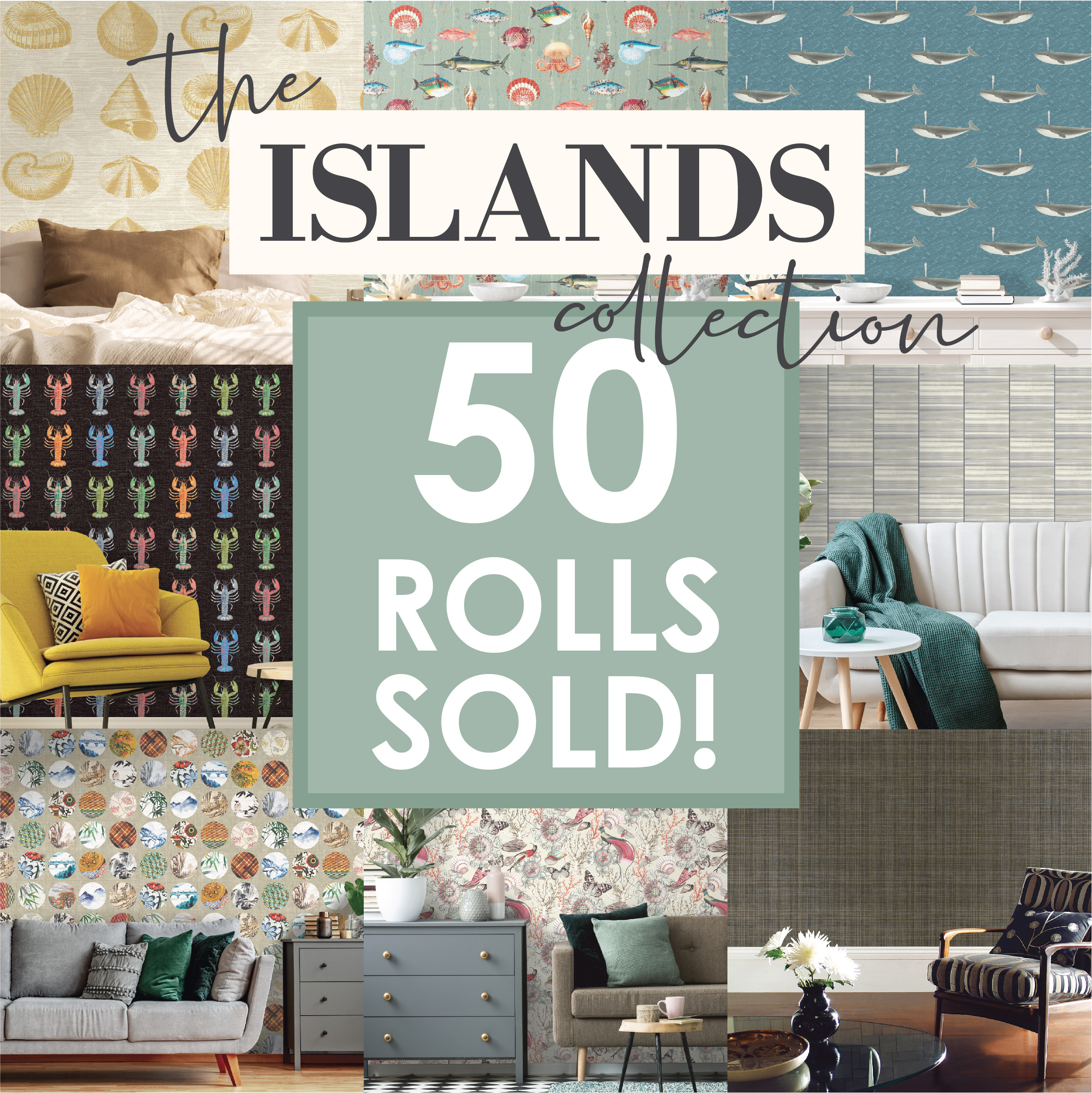 50_rolls_sold2_2515
