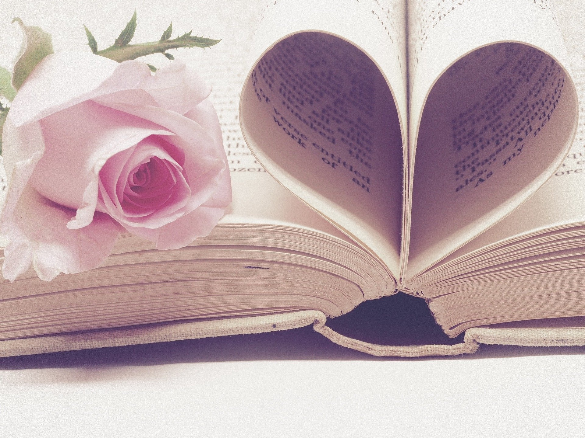 literature3060241_1920_1920